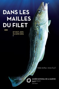 1 maille